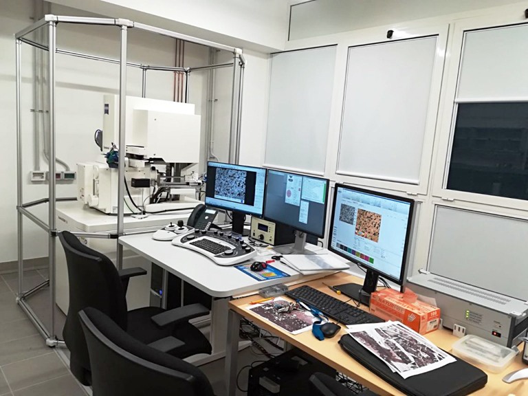 Microscopio ELettronico Zeiss FEG Gemini 500