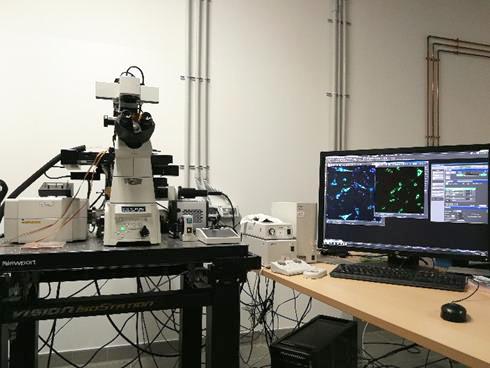 microscopio ottico confocale Nikon A1R