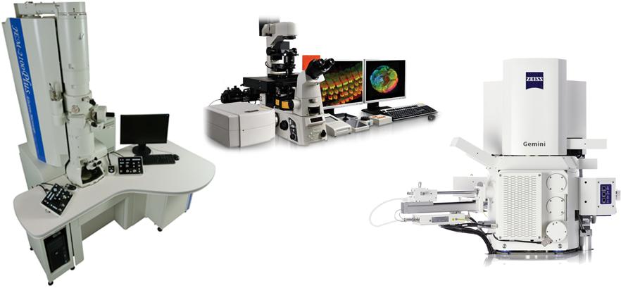 Piattaforma di Microscopia UNIMIB